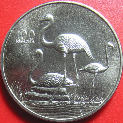 1998 ZAMBIA 100 KWACHA FLAMINGO AFRICAN WILDLIFE RARE! CU-NI 38.6mm (no silver)