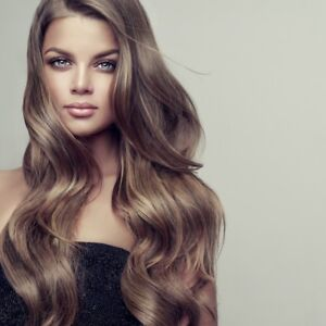 Full Head Of Hair Extensions Free Application 350