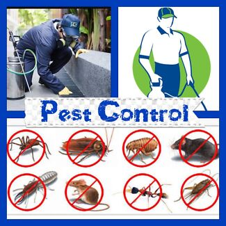 1st Solution Home Services Pest Control from $69
