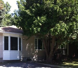 Beautiful 3 bed/1 bath Bungalow Residential or Commercial!