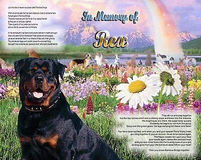 Dog Memorial.-Rottweiler-Rainbow Bridge Poem Personalized w/Pet's Name - Gift