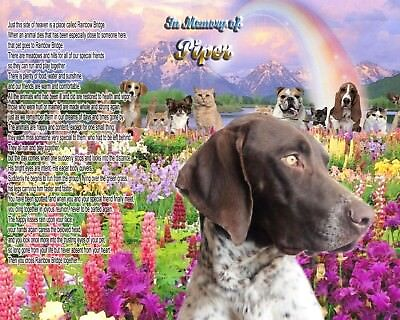 Rainbow Bridge Poem Short-Haired Pointer Dog Memorial Personalized w/Dog's Name