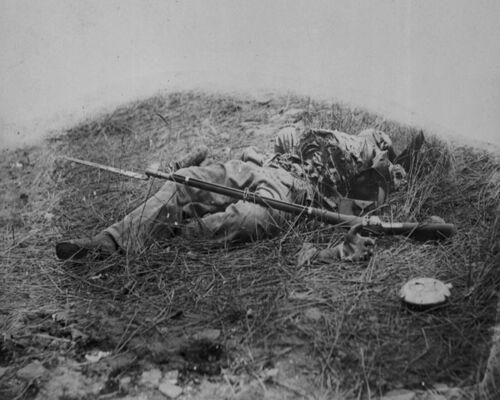 Battle of Gettysburg - Dead Confederate Soldier Rose Woods 8x10 Civil War Photo