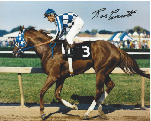Autographs For Sale by RACC Trusted Sellers | Authentic