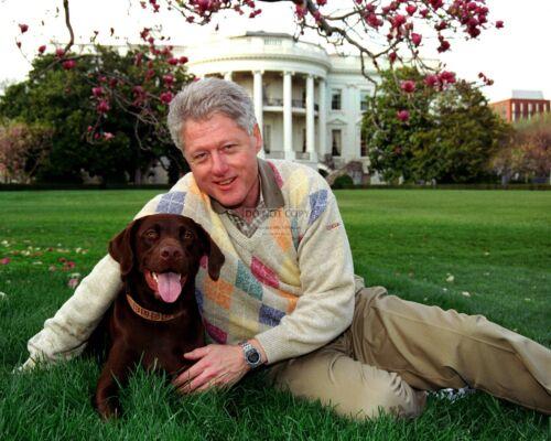 "PRESIDENT BILL CLINTON WITH HIS DOG ""BUDDY"" - 8X10 PHOTO (BB-528)"