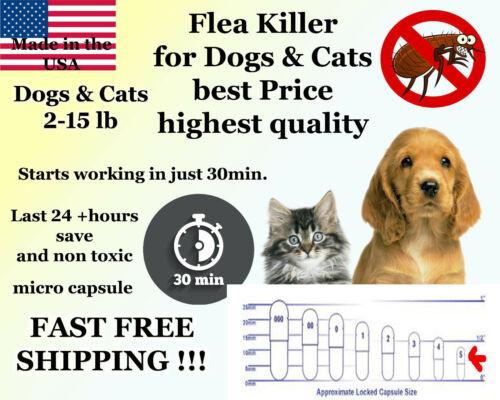 50 Instant Flea Killer Control for small Cats 2-15lb prevention MICRO PILL NEW