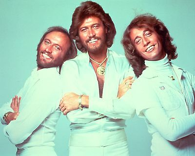 "Bee Gees 10"" x 8"" Photograph no 8"