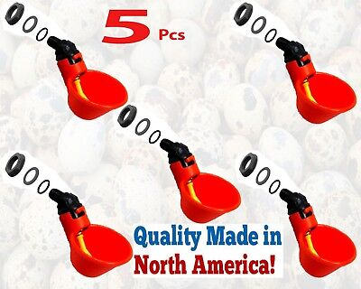 5 Pack Poultry Water Drinking Cups With Nuts- Chicken Plastic Automatic Drinker