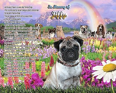 Rainbow Bridge Poem Pug Dog Memorial Picture Personalized w/Dog's Name-Pet-Loss