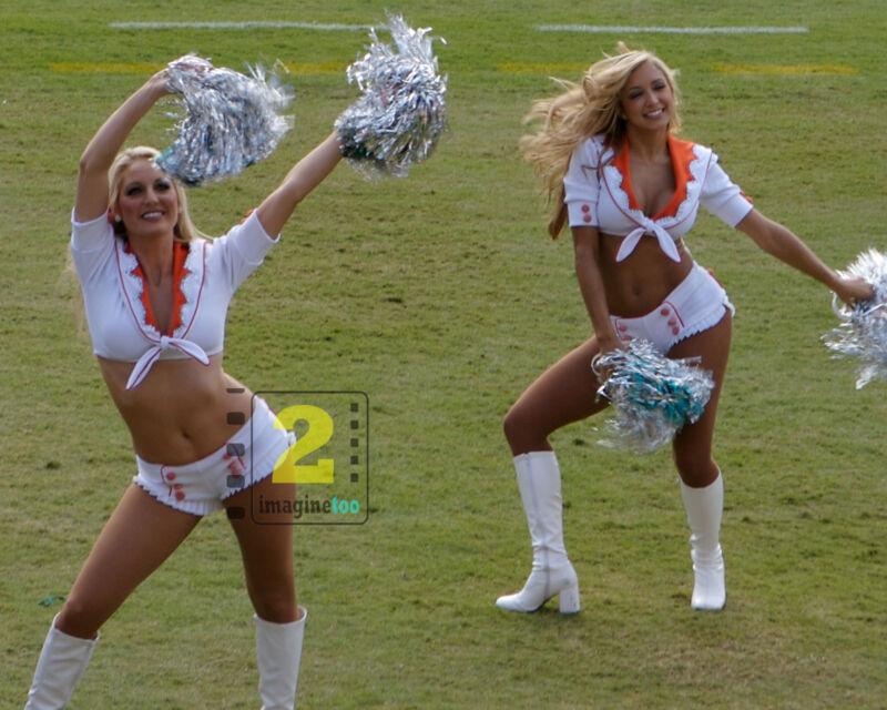 """Miami Dolphins Cheerleaders 10""""x 8"""" Great Color PHOTO REPRINT"""