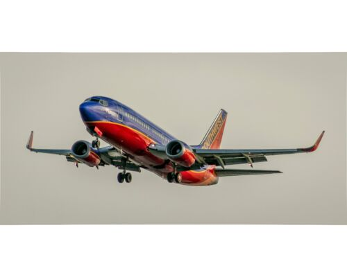 Southwest Airlines Boeing 737 10x20 Photo (APPM10006)