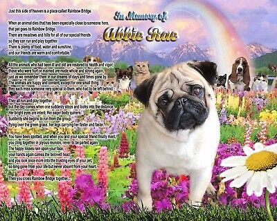 Dog Memorial.-Pet-Loss Gift-Fawn Pug-Rainbow Bridge Poem-Personalized w/Name