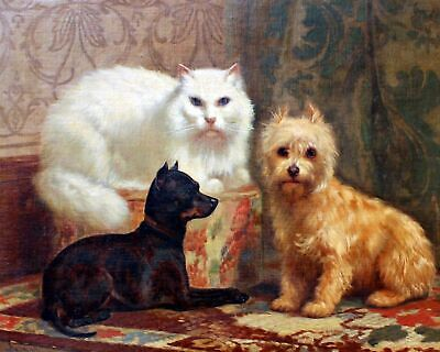 Persian cat, Miniature Pinscher & Terrier by JH Dolph. Animals . 11x14 Print ()