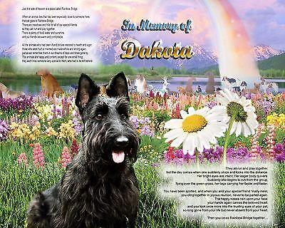 Scottish Terrier Memorial Picture-Rainbow Bridge Poem Personalized w/Pet's Name