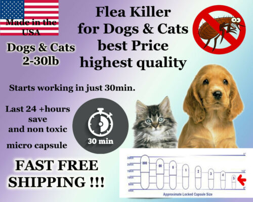 50 Instant Flea Killer Control small Dogs or Cats 2-30lb prevention MICRO PILL