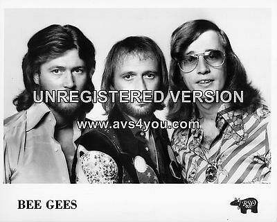 """Bee Gees 10"""" x 8"""" Photograph no 5"""