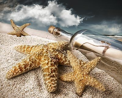 Starfish ~ Message in Bottle 8 x 10 GLOSSY Photo Picture