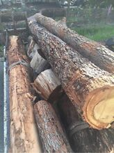Firewood trees wanted jarrah ,red gum etc Middle Swan Swan Area Preview