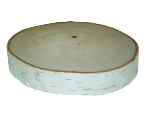 Birch Rounds- Thick