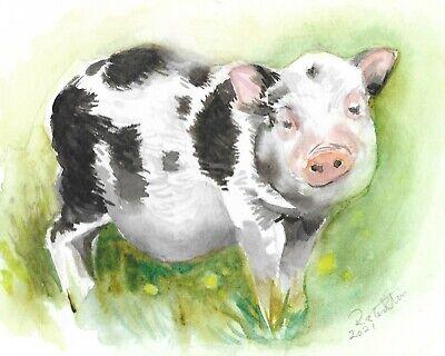 Piglet painting original watercolour farm animals