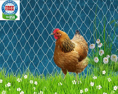 POULTRY NETTING 25' GAME BIRD AVIARY CHICKEN DUCK QUAIL PEN PROTECTIVE NET  2