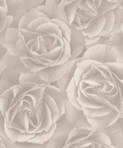 Rasch Tapete Crispy Paper / Rasch 525601 / Rosen Tapete Beige-Grau / EUR 2,15/qm