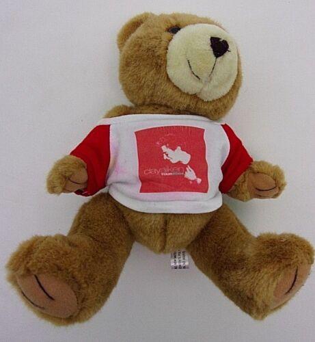 Clay Aiken Tour 2004 Teddy Bear Plush Stuffed Animal Brown Toy Girl Steven Smith