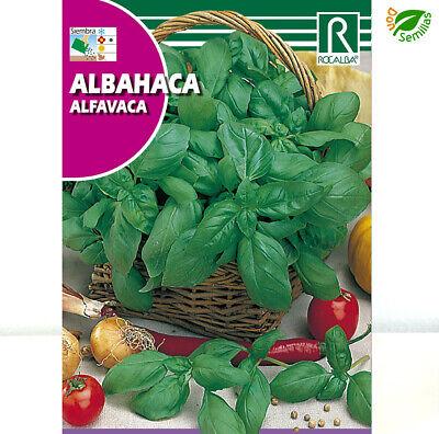 Albahaca ( 4 gr / 2.500 semillas ) Ocimum basilicum - seeds
