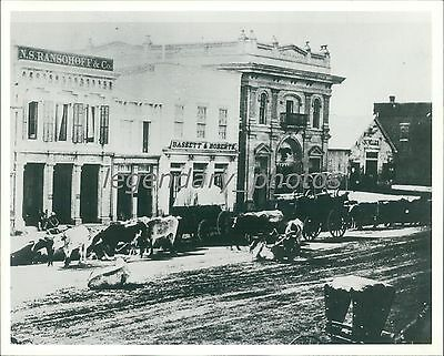 1860S Zions First National Bank Salt Lake City Utah Original News Service Photo