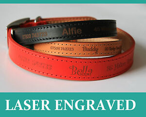Personalised-Dog-Puppy-Collar-Tag-Ancol-Quality-leather-Laser-Engraved-UK-made