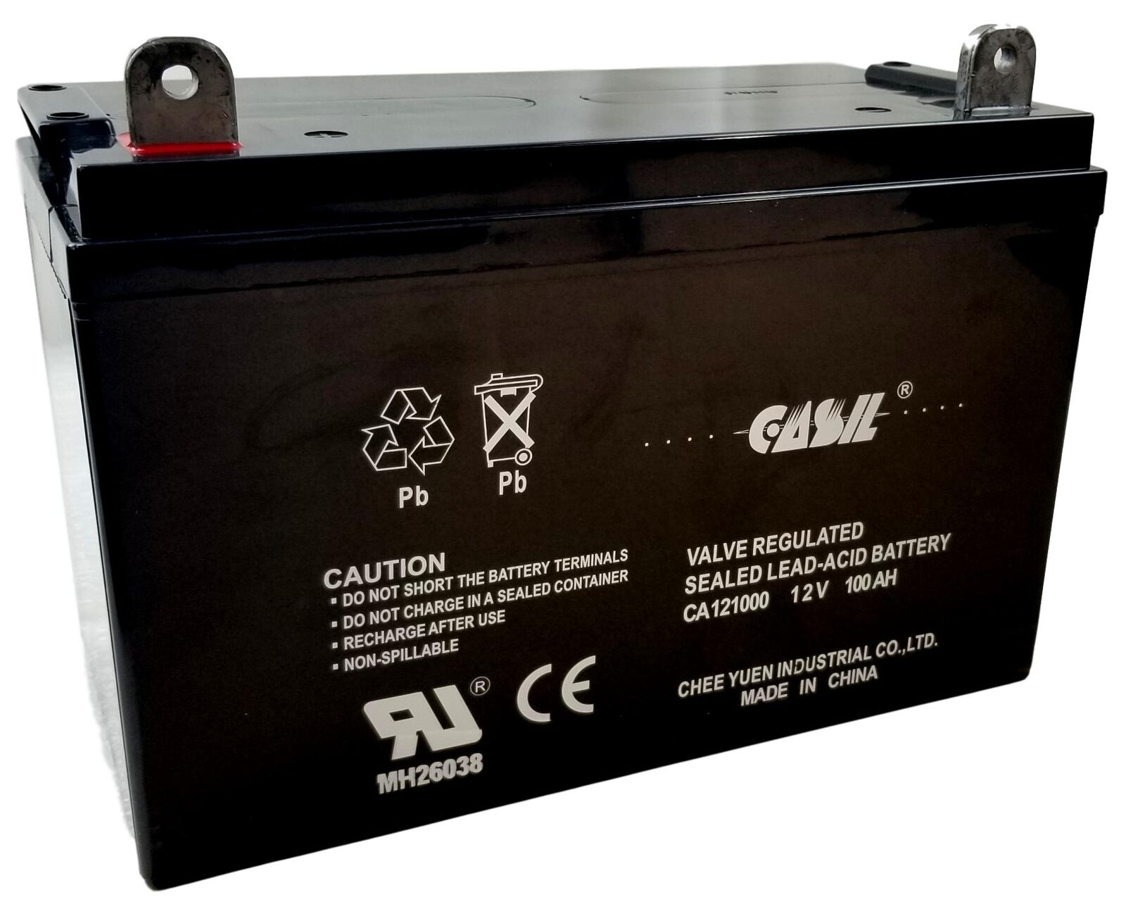 Renogy 100Ah 12V Deep Cycle AGM Battery Solar Power Replacme