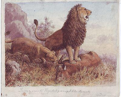 Originalzeichnung Gemälde Hagenbeck Heinrich Leutemannn 1890 Aquarell signiert