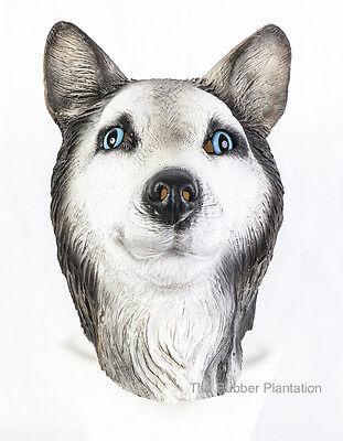 Sibirischer Husky Maske Hund Latex Tier Kostüm Hunde Halloween Malamute Wolf