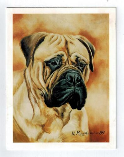 New Bullmastiff Pet Dog Head Study Notecard Set - 12 Note Cards By Ruth Maystead