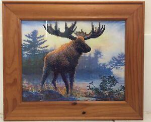 5D art Moose Beaudesert Ipswich South Preview