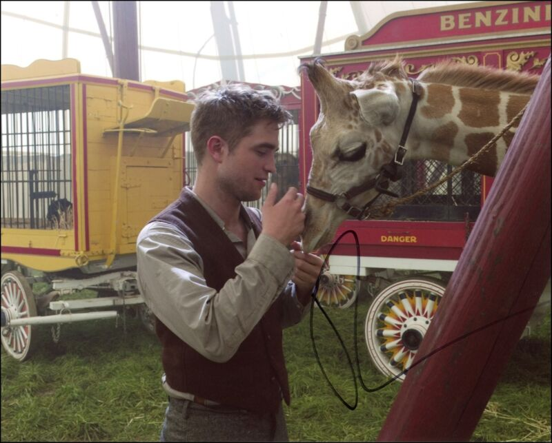 "Robert Pattinson ""Water for Elephants"" AUTOGRAPH Signed 'Jacob' 8x10 Photo ACOA"