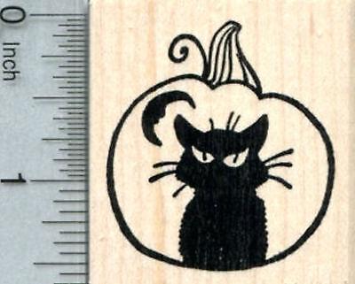 Halloween Pumpkin Rubber Stamp, Black Cat Carved in Jack O Lantern E32701 WM