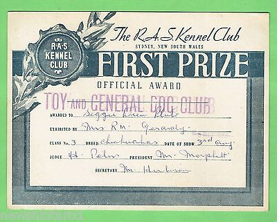 #T41. #34. 1955  RAS KENNEL CLUB DOG FIRST PRIZE  CERTIFICATE, CHIHUAHUA