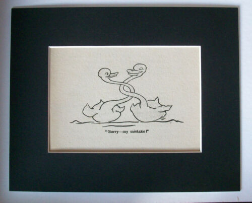 Print Swans Interlock Necks 1930s Bookplate Sorry My Mistake 8x10 Matted Cutie
