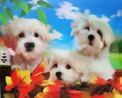 Puppies - 3D Lenticular Poster --12x16 Print