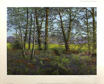 """BILL MAKINSON """"Old Hay Cart"""" woodland meadow SIGNED! SIZE:56cm x 70cm NEW RARE"""