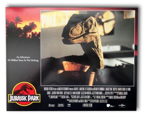 """Jurassic Park"" Original 11x14 Authentic Lobby Card Poster Photo 1993 #2"