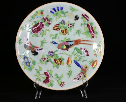 Antique Chinese Porcelain Plate Famille Rose Celadon Seal Mark 19th Century 10""