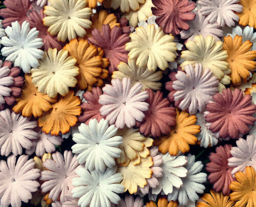 50+Petals+Daisy+Flower+Mixed+Brown+Tone+White+Mulberry+Paper+Craft+Wedding+Card+