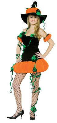 Womens Pumpkin Witch Adult Costume
