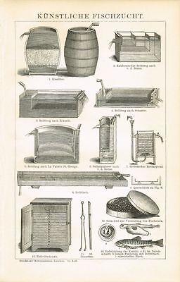 Tafel FISCHZUCHT / BRUTAPPARATE / FORELLEN / FISCHEIER 1894 Original-Holzstich