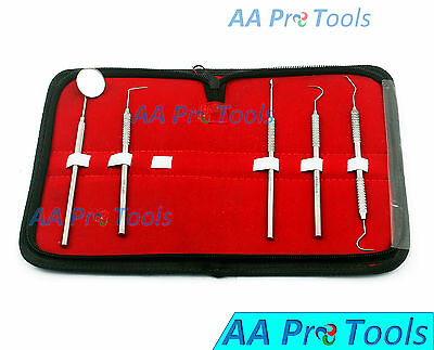 Aa Pro Dental Scaler Set With Leather Look Case - Tartar Calculus 5 Pcs