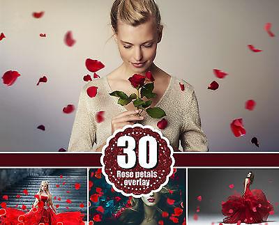 Цифровая фоторамка 30 Falling Petals Photoshop