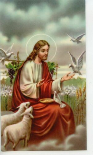 An Act of Contrition - Laminated Holy Card