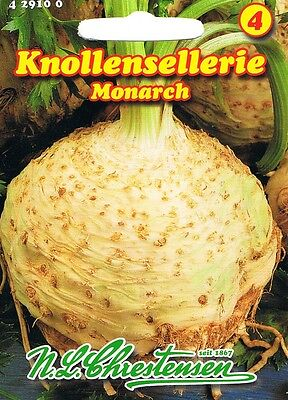 Knollensellerie 'Monarch'  Sellerie  Saatgut 429100